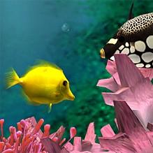 Premium Bildschirmschoner - Aquarium 3D