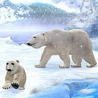 Premium Bildschirmschoner - Eisbären 3D