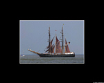 Tall Ships' Race 2004 - Cuxhaven